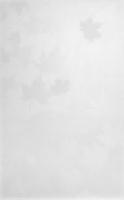 Облицовочная плитка 6150 Гайд-Парк белый 25x40 см