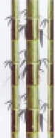 B1682/7067 Стебли бамбука 20x50