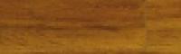 дуб Доломиты