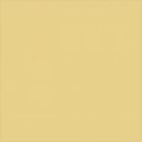 Керамический гранит TU603100R Арена светло-желтый обрезной 60x