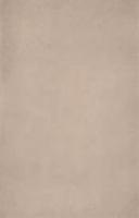 Облицовочная плитка Cappucino 32x49 см