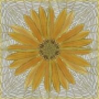 Панно цветы купить HJAM2987-2 60х60 см