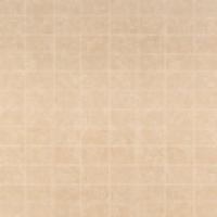 17214 Бежевый ледник мрамор (San Marco beige Scored), 10х15