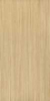 Напольная плитка Облицовочная плитка 30 Beige 30х60 см