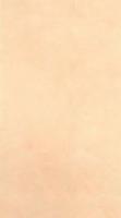 Облицовочная плитка Seta 25x45 см