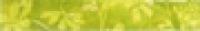 Декор Listello Daisy Green 5х30 см