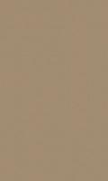 Облицовочная плитка Esprit Beige Rett 31,5x52 см
