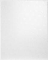 Облицовочная плитка 2115 Гринвич белый 20x25 см
