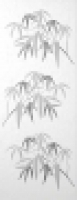 B1683/7067 Стебли бамбука 20x50