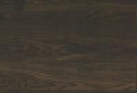 дуб африканский (экс)