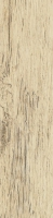 cisa xilema frassino 20x80